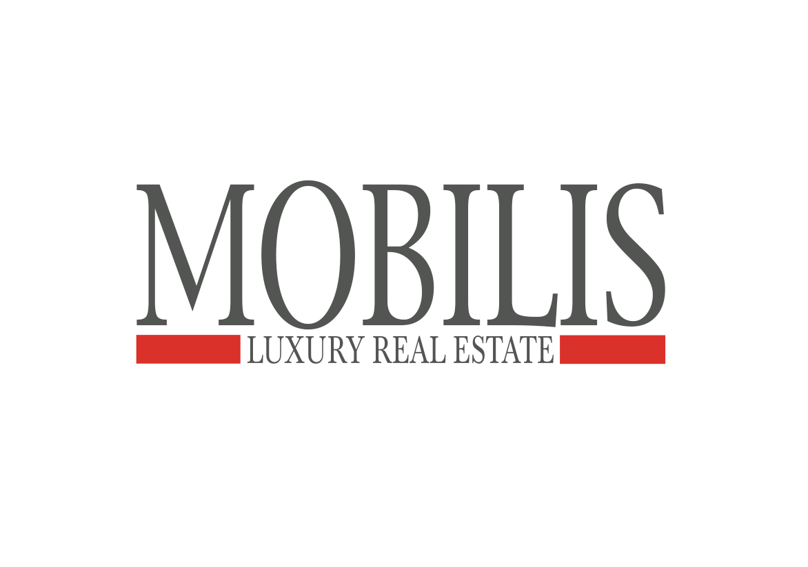 groupe mobilis- company logo