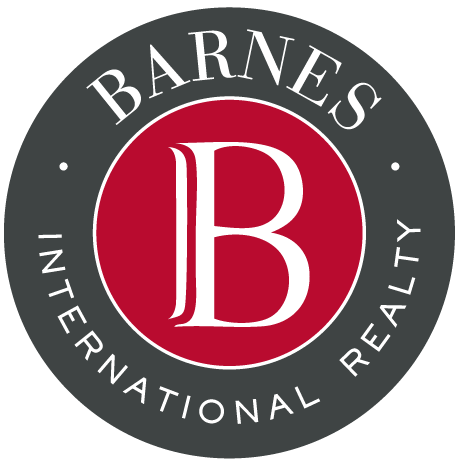barnes international- company logo
