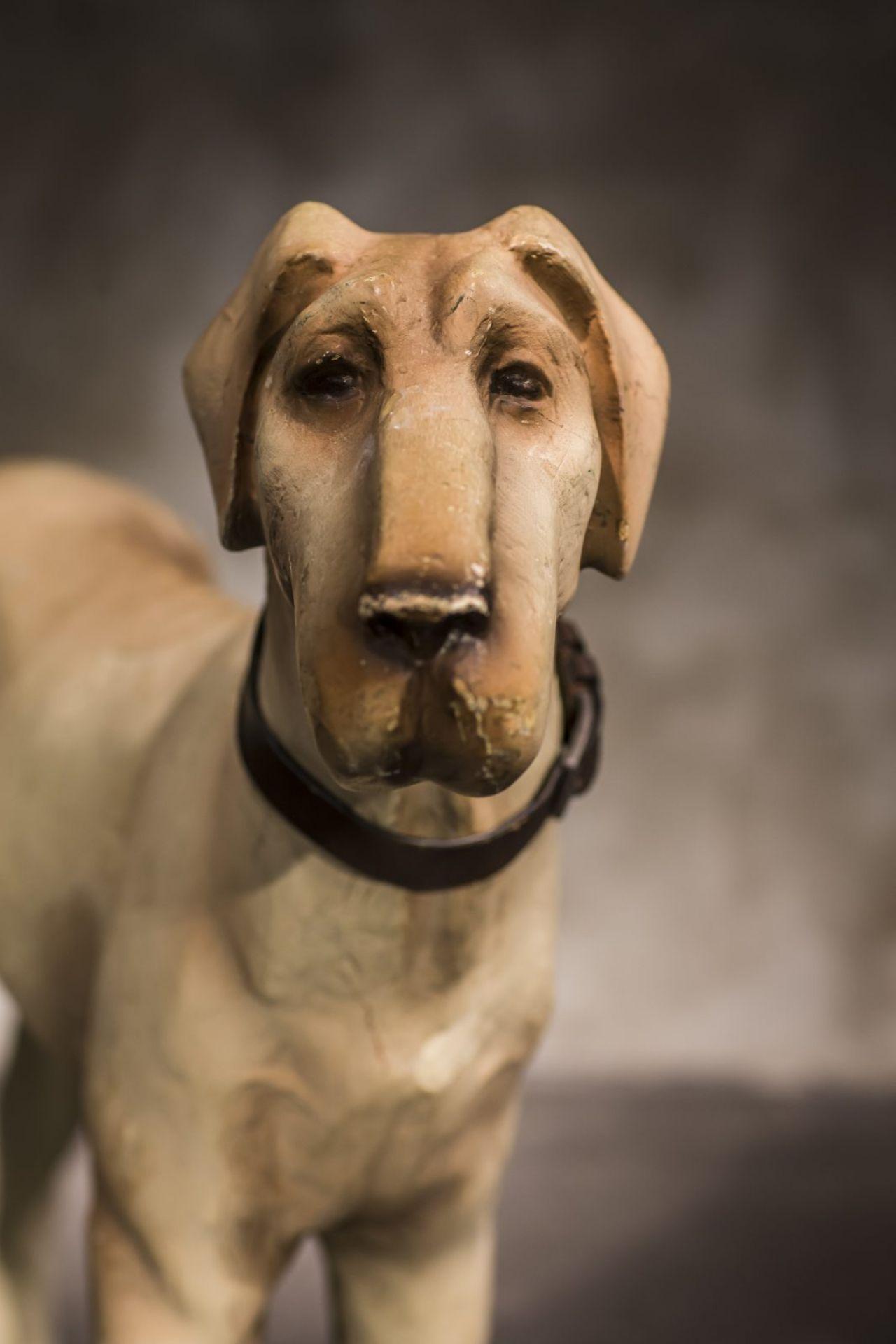 Papier Mache Dog