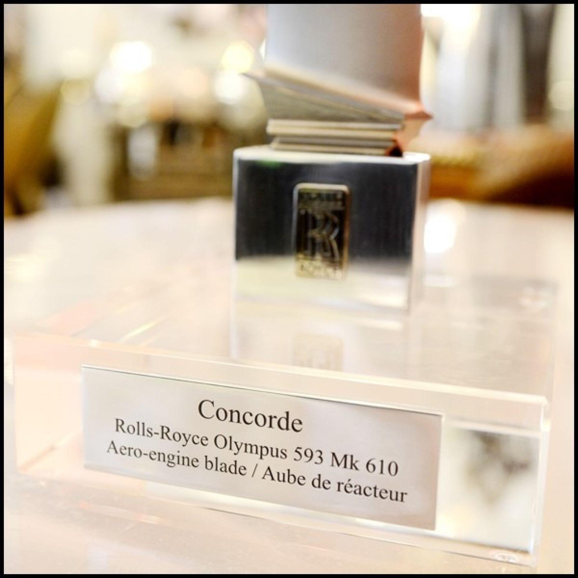 OLYMPUS 593 MK 610 PC-CONCORDE ROLLS-ROYCE SUPERSONIC REACTOR WING SCULPTURE 1