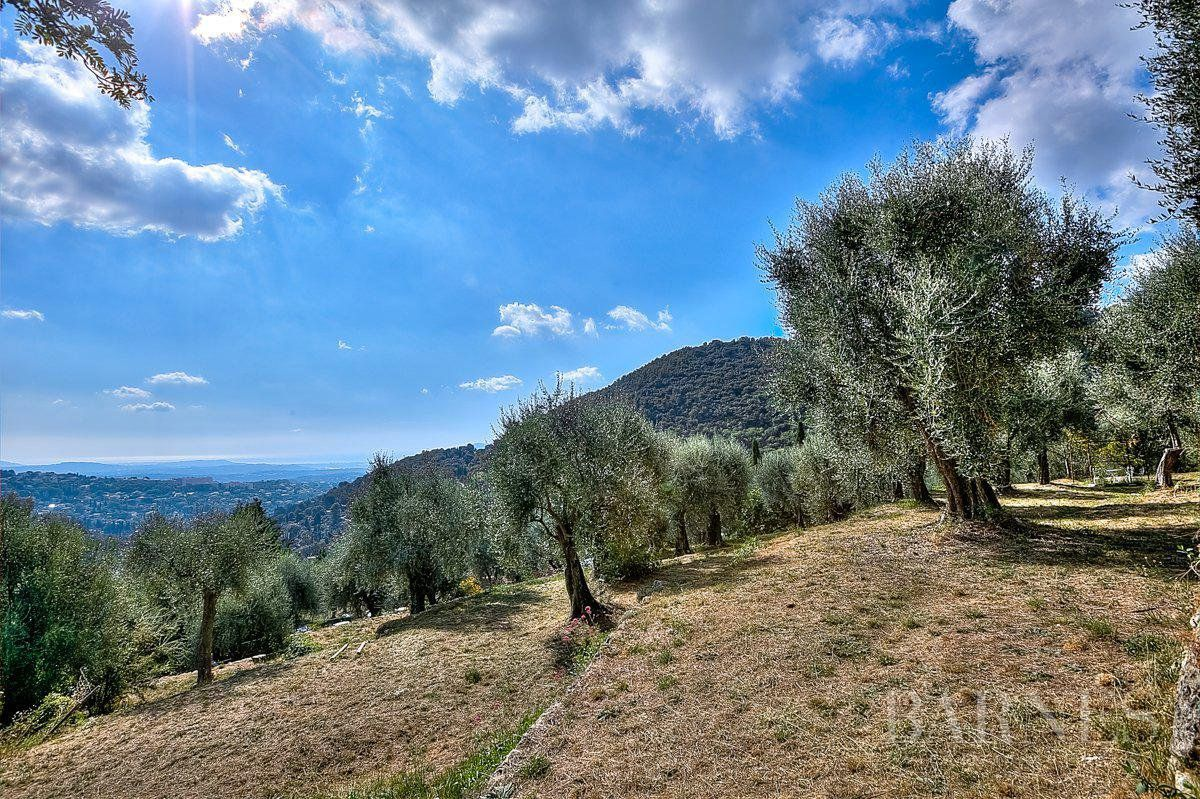 CANNES - COUNTRYSIDE - XV CENTURY MAS WITH OLIVE GROVE
