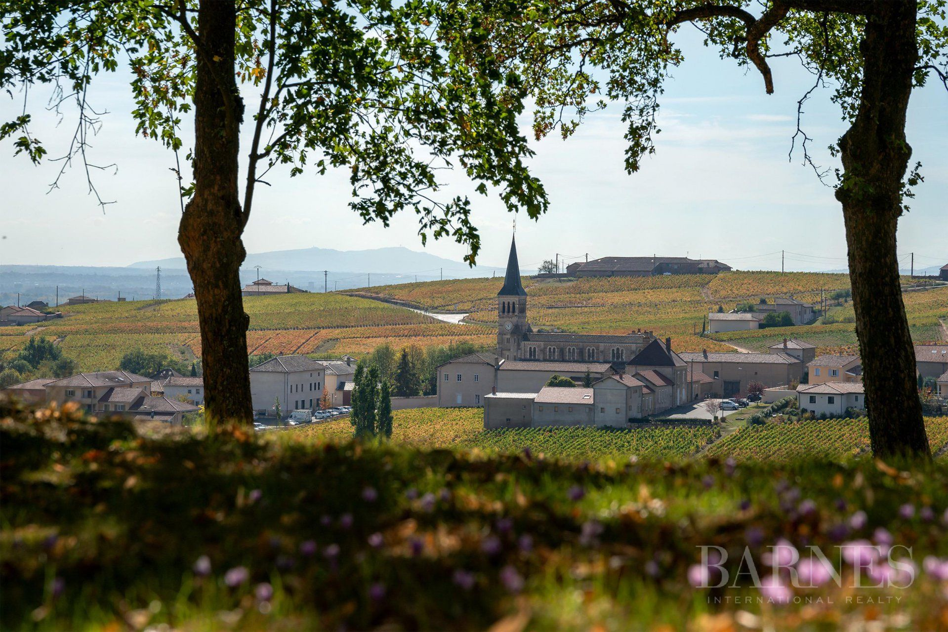 Beaujolais - Castle of 25 rooms - Land of 1.4 ha - 12 rooms