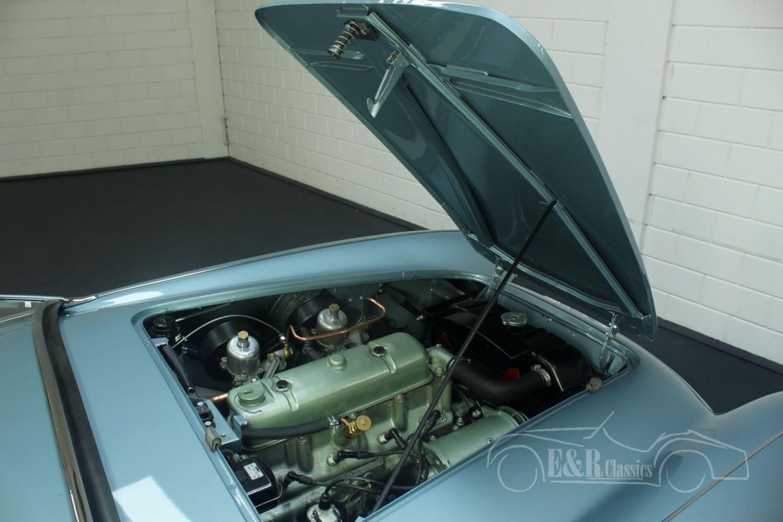 AUSTIN-HEALEY 100-4 BN1 1954