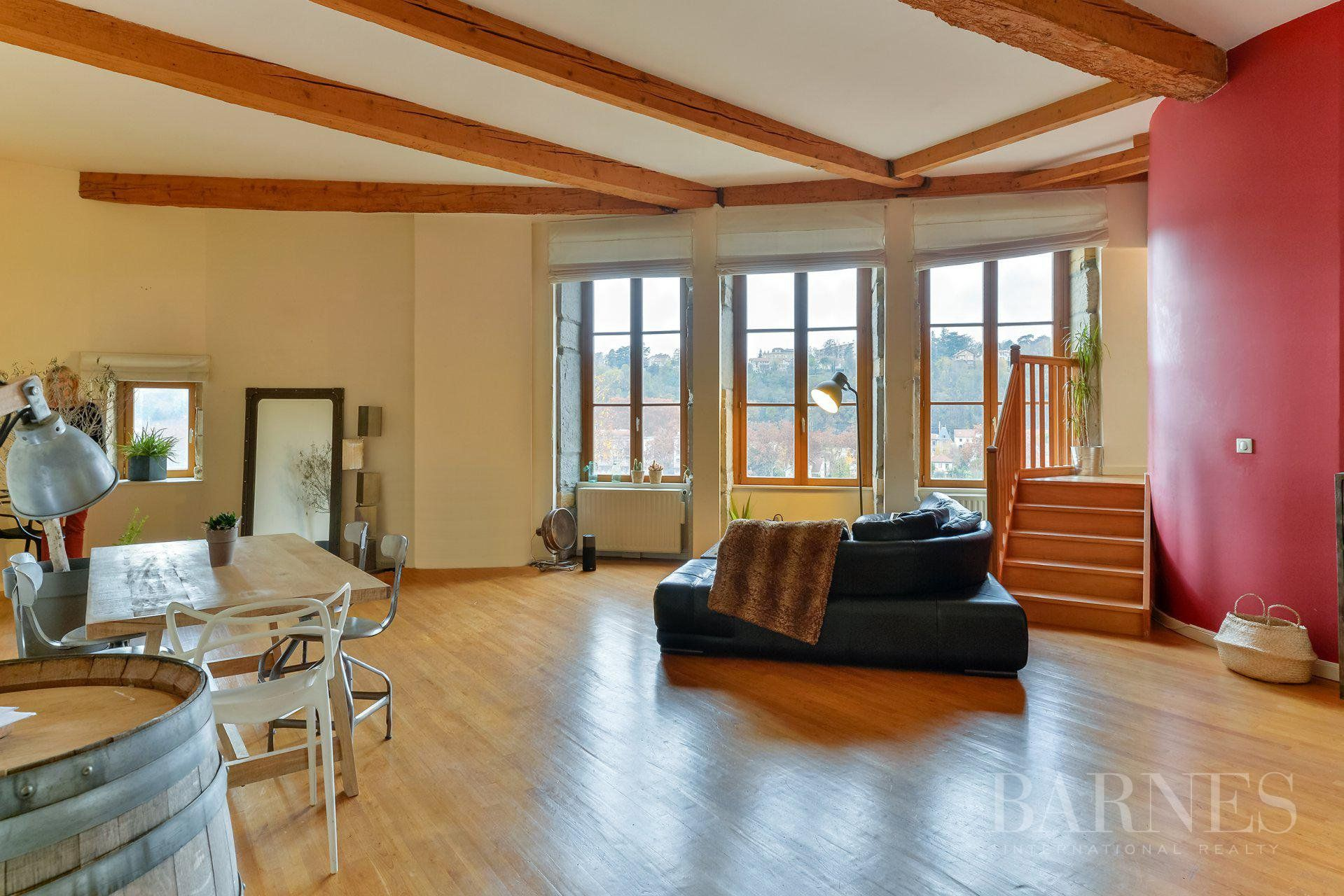Caluire-et-Cuire - Apartment of 170 sqm in a castle - 3 bedrooms