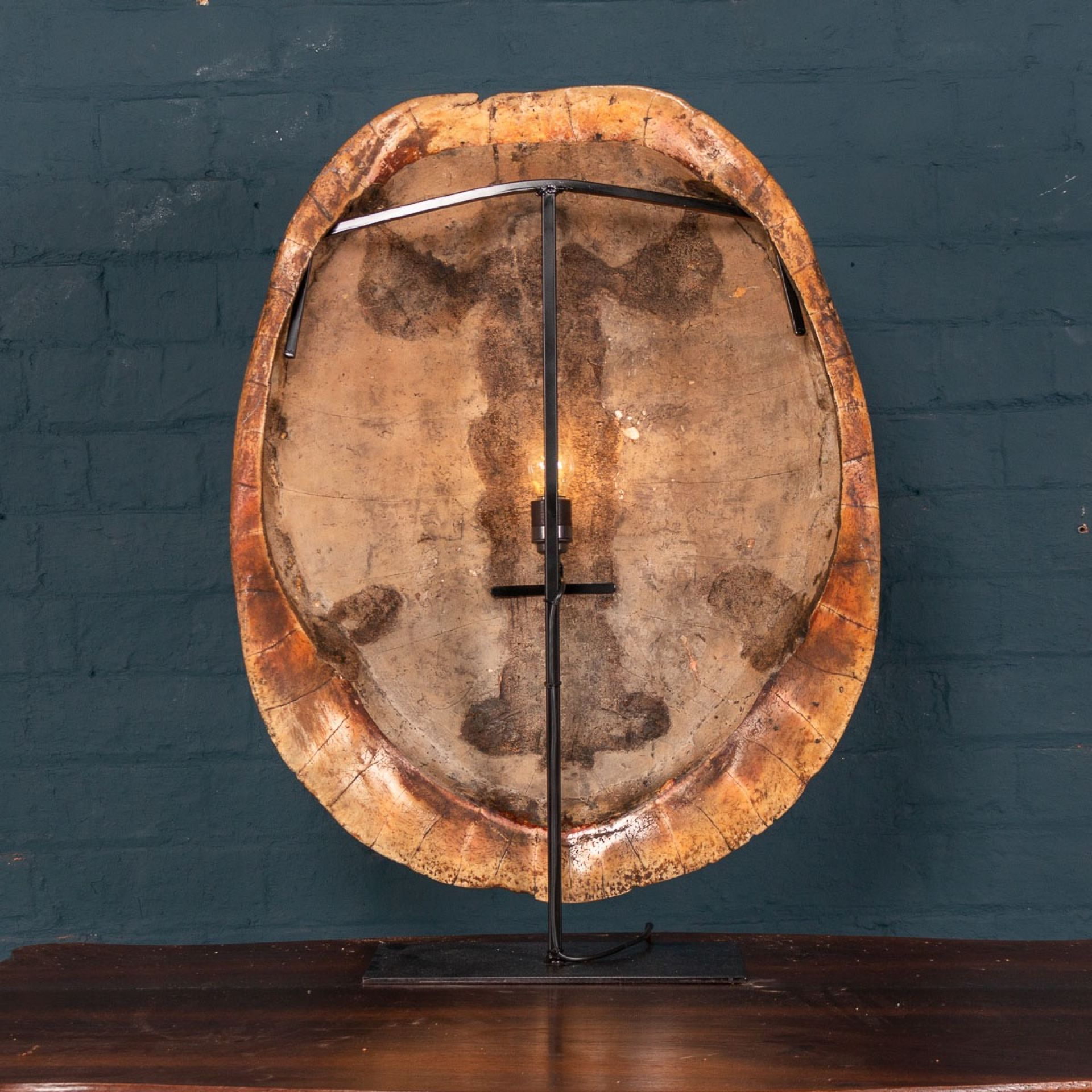 "LATE 19THC ""BLONDE"" TURTLE SHELL, ON A LAMP MOUNTED STAND"