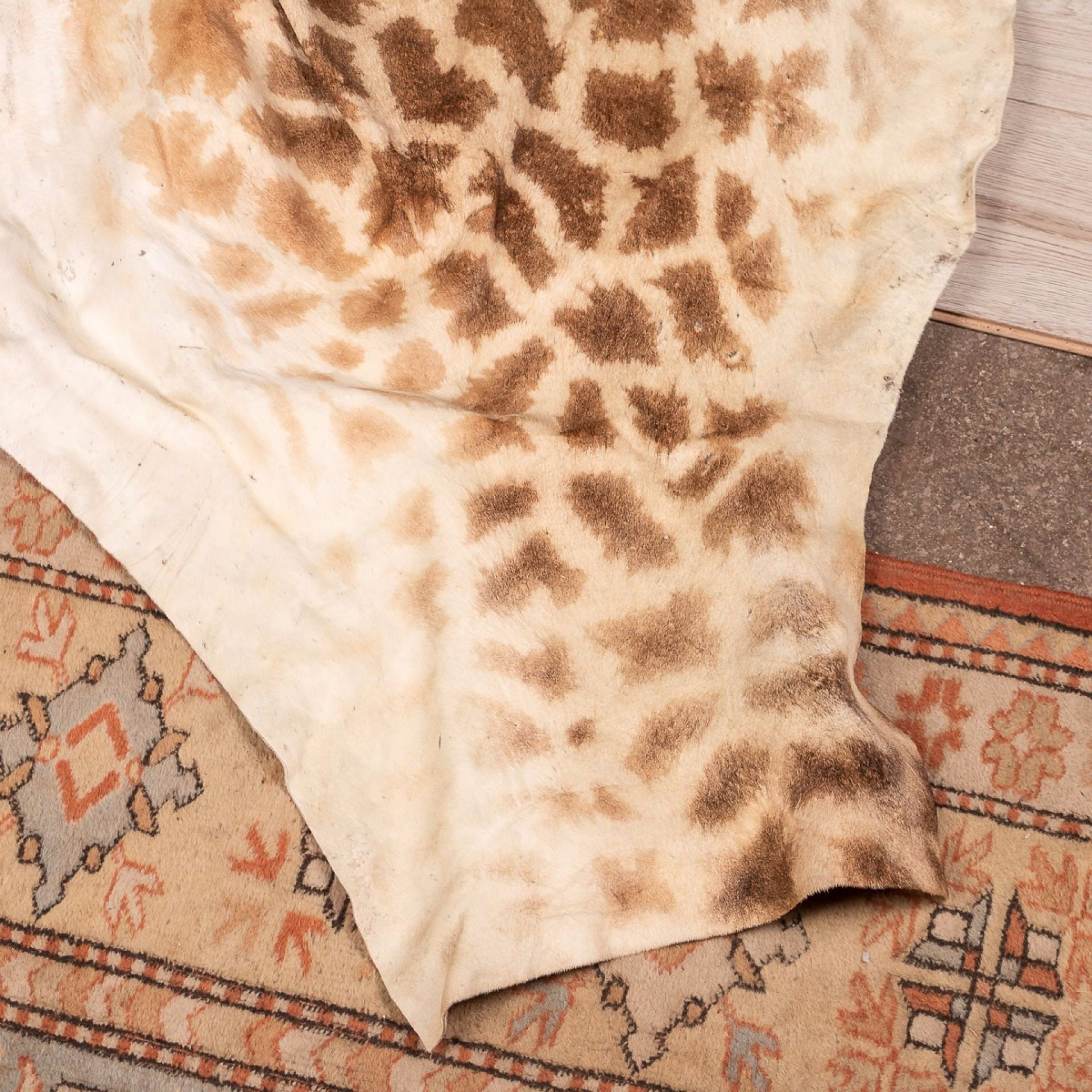 GENUINE LARGE AFRICAN GIRAFFE RUG
