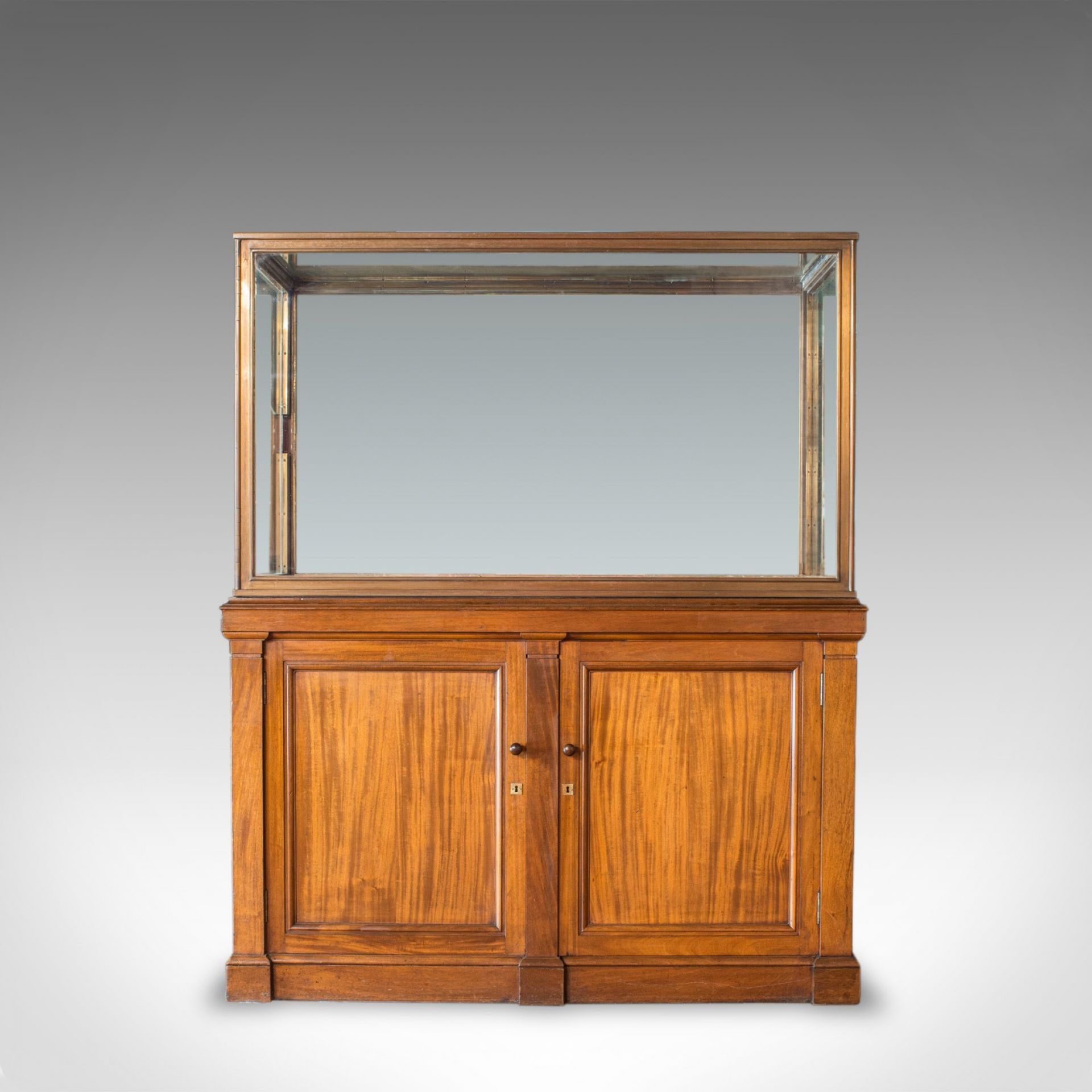 Antique Display Cabinet, English, Walnut, Bronze, Showcase, Museum, Circa 1900