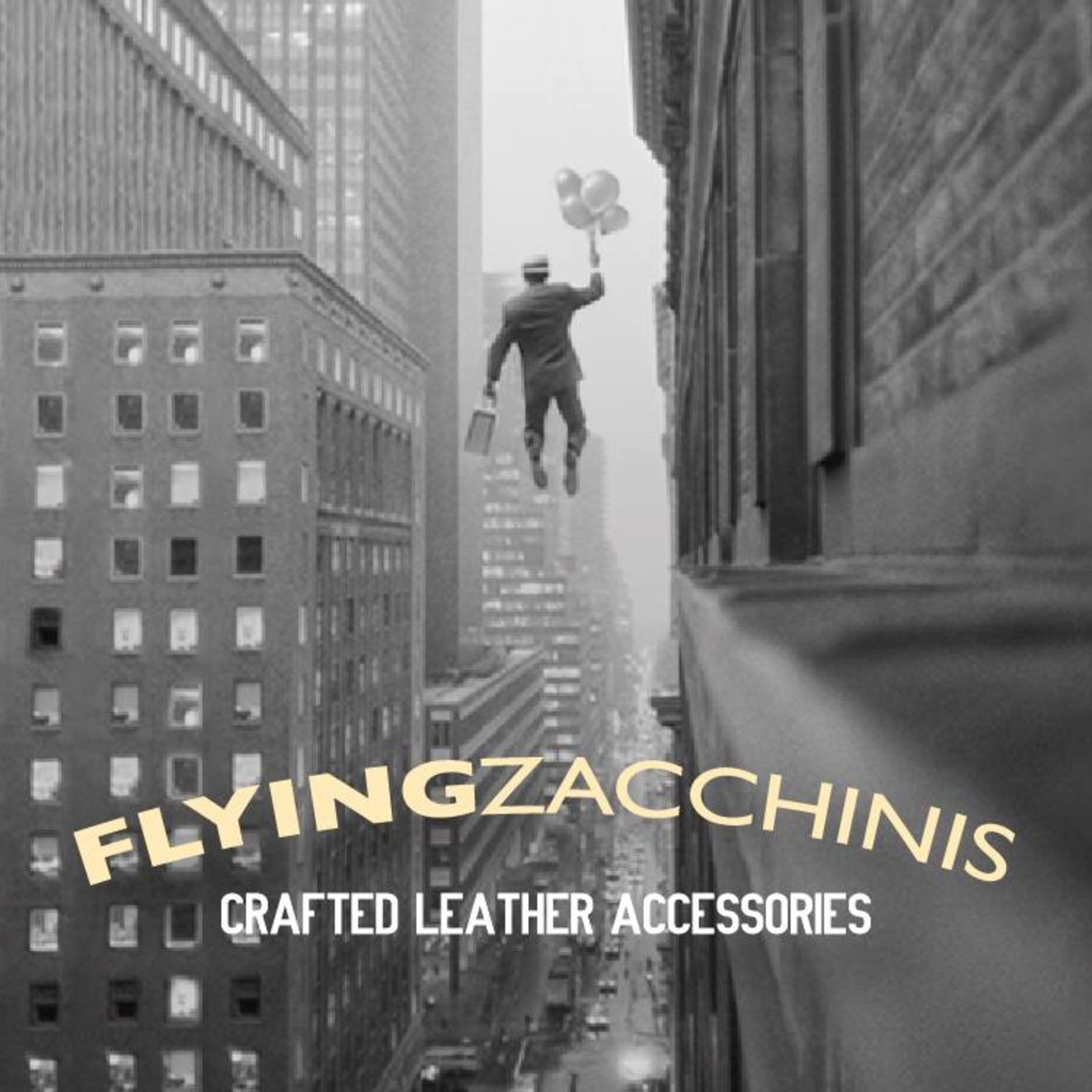 flying zacchinis- company logo