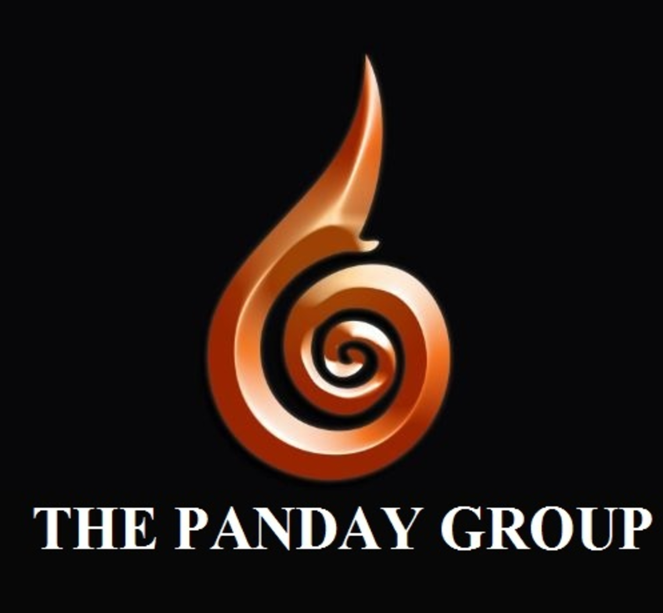 the panday group- company logo