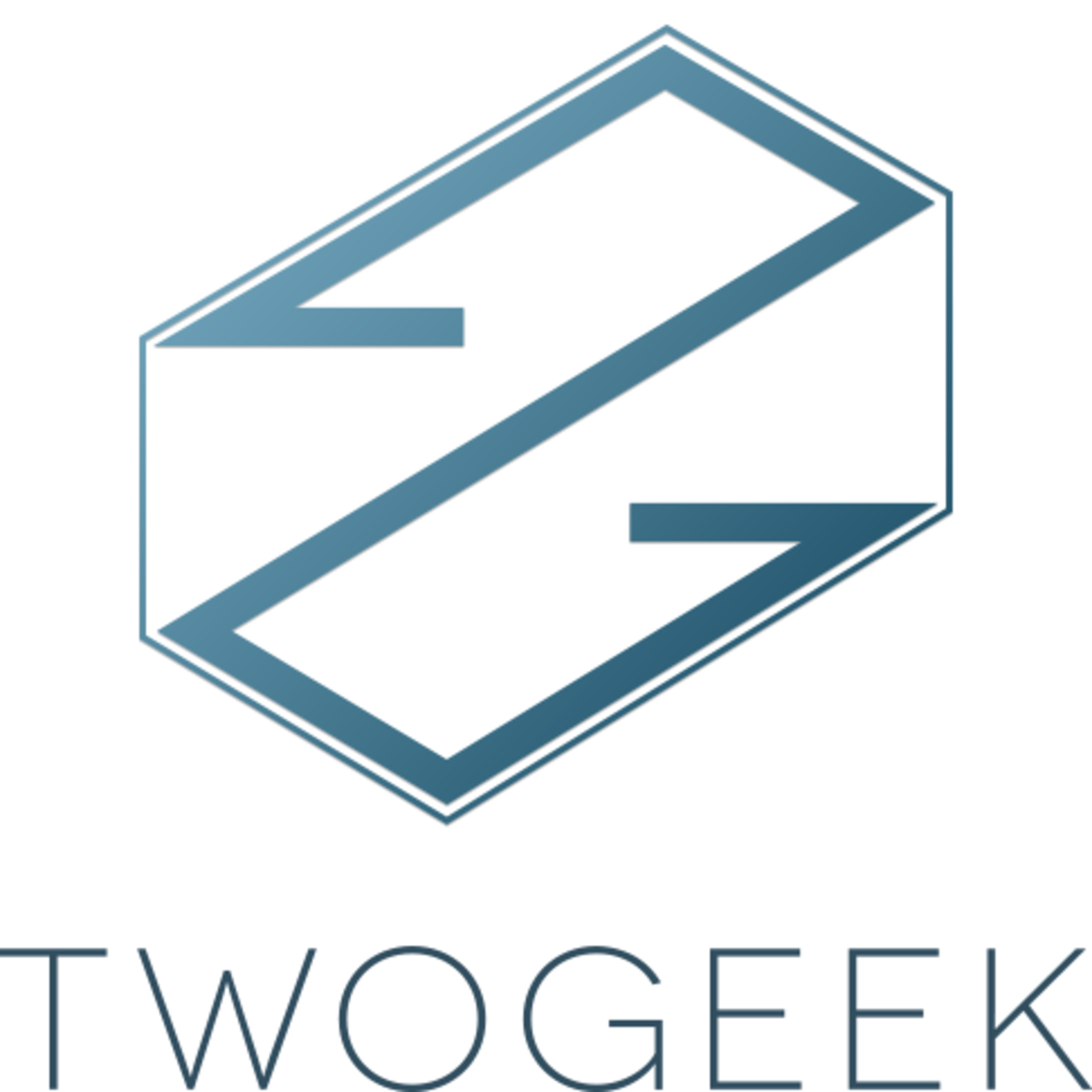 twogeek pte ltd- company logo