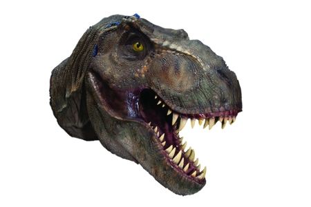 T. rex Head (Jurassic Park Movie)