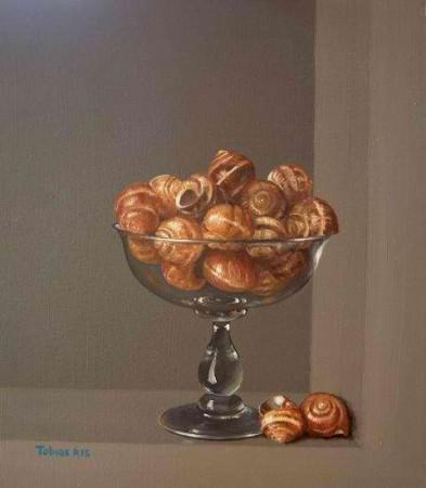 Snail shells - Thobias Harrison