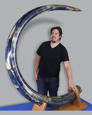 Magnificent Blue Mammoth Tusk from Alaska - 9.75 Feet, 119 lbs.